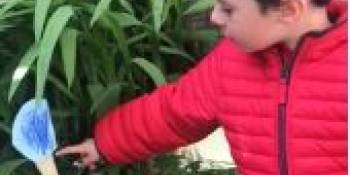 elijah-puppets-caterpillar