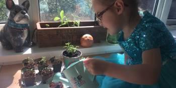 millie-planting